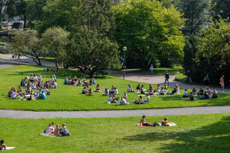 08112020_Nygårsdparken_HFT_07