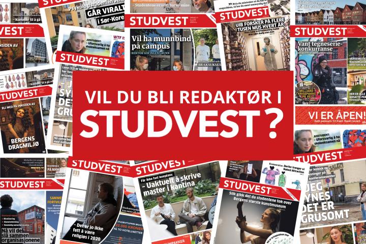 Vil du bli redaktør i Studvest?